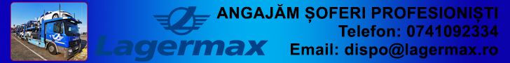 Banner Lagermax